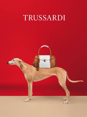 trussardi-dog-3-w352