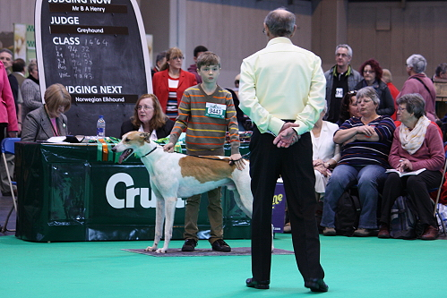 Crufts14_07_WhitefortMac2
